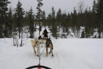 Lapland10