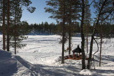 Lapland13