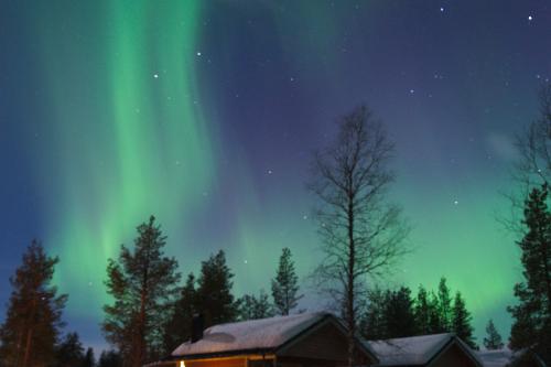 Lapland16